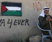 Israel about to 'commit war crime' that will leave 50 Palestinian children homeless